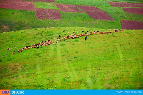 طبیعت سلمستان